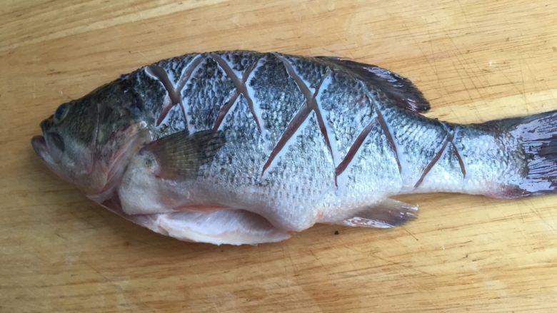 糖醋鲈鱼,割菱形刀痕(便于入味)