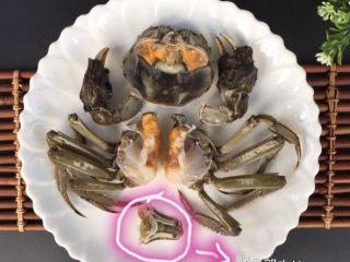 蒜泥螃蟹,首先处理螃蟹,清洗干净之后把螃蟹分成6块,好残忍地说😪,去除蟹腮、蟹肠、蟹心,蟹胃图中没去掉,吃的时候记住不能吃的(没去原因:防止蟹黄炸的过程中散落) 温馨提醒⚠️:清洗螃蟹的时候小心避免被螃蟹夹着手。切记吃螃蟹四个部分不能吃:蟹肠、蟹胃、蟹心、蟹腮!