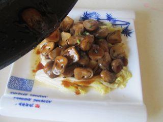 蚝油草菇扒娃娃菜,将煮好的草菇摆放在焯好的娃娃菜上。