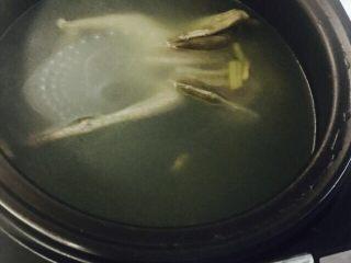 营养鸽子汤,放入电饭煲内,加水淹过鸽子,启动煲汤按钮,45min即好