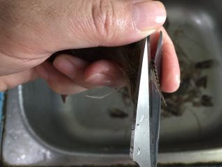砂锅粥—鲜虾粥,用剪刀剪去2虾须,头上的刺。