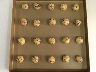 蔓越莓椰蓉球,冷藏完毕取出,分成20等份,搓成小圆球状。