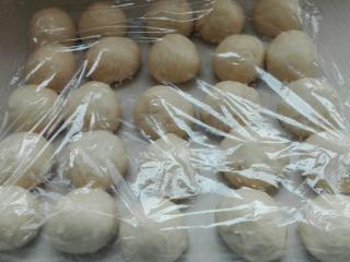 蜂蜜脆底小面包,发酵好的面团排气,均分25份,(每个小面团约29克)揉圆盖保鲜膜醒发15分钟