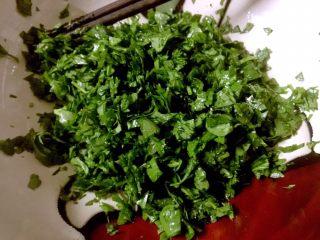 芹菜叶鸡蛋饼,用筷子将撒过盐的芹菜叶碎搅拌均匀 放置两三分钟,待叶子稍蔫有点出水状态