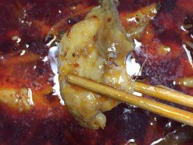 美味火锅鱼