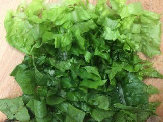 杂蔬饭团一让你孩子爱上吃饭,切碎的油麦菜