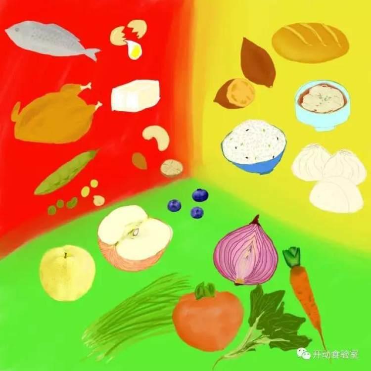 日本幼儿园的三色营养均衡法