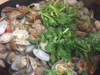 辣炒花蛤,出锅前放入香菜段