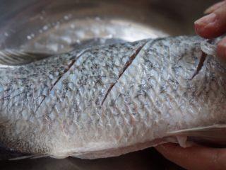 柠檬烤鱼,在鱼身上抹盐,腌制半小时。