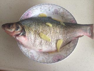 葱油鳊鱼,然后把几块生姜放入鱼肚,剩下的铺在外面。