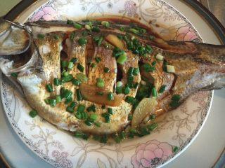"""葱油鳊鱼,把滚油泼在鱼身上。(这里要用锅盖当盾牌保护自己哦!""""滋滋""""作响的油可是会烫到你的)"""