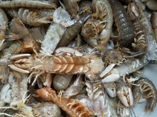 白水爬爬虾,爬爬虾洗干净