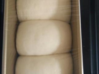 快捷土司(一次醒发,无黄油),发酵至八分满时取出土司模具。