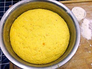 南瓜大馒头,发酵好的面团,有原来的两倍大