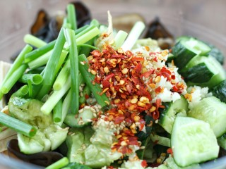 黄瓜腐竹拌木耳,最上面放葱段、蒜末、辣椒面和芝麻