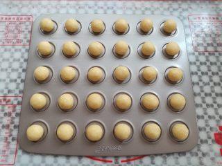 黄金椰蓉球,所有的椰蓉球全部搓圆放到模具上