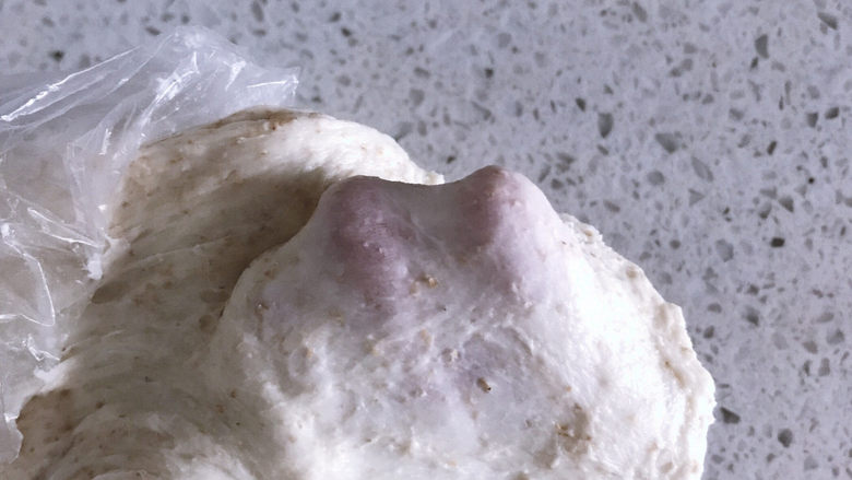 低油低糖的全麦贝果,静置一小时后的状态,很轻松就能扯出厚膜了