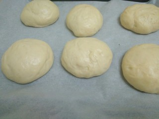 迷你巨无霸汉堡包~汉堡胚制作~,面团拿出来分成六个一样大小的面团滚圆,盖上保鲜膜,放在温暖的地方发酵15分钟,我家现在31度,很适合发酵_(:з」∠)_(31度我还烤面包,我是不是不正常?)