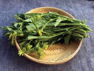 酸菜炒肉末~附上酸菜制作方法!,芥菜去掉老的部分,清洗干净。买不到芥菜苔,用没有长苔的芥菜也可以同样用这个简单的方法制作的。