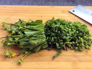 酸菜炒肉末~附上酸菜制作方法!,把嫩的芥菜切成小段,长短可以根据自己的喜好来哈,我喜欢短颗粒,所以切成这样了(芥菜不用晾干水分,洗干净就可以直接切了哈,是不是很简单!)