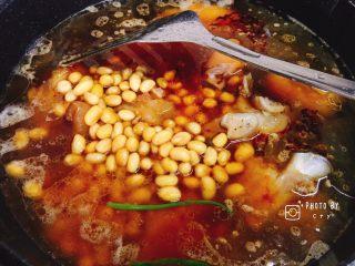 满满胶原蛋白的黄豆焖猪蹄,倒入第一轮清水(盖过猪蹄),煮至沸腾。