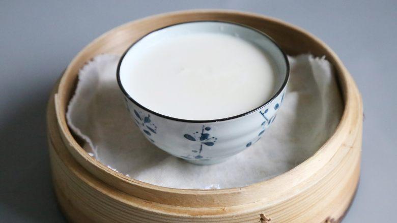 双皮奶,无需搅动,将盖上保鲜膜或盖子,防止蒸汽滴落影响成品,放入蒸笼,蒸15分钟即可。