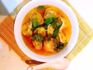 清汤香葱肉馄饨,把调好的汤汁浇到馄饨里,加入香菜,清汤馄饨做好了,吃一口馄饨香喷喷,喝一口汤汁爽歪歪!