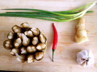 蒜蓉蒸圣子,食材准备:圣子,姜,蒜,指天椒,葱
