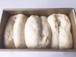 全麦吐司(汤种法),发酵到吐司盒9分满