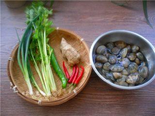 香辣姜葱炒花蛤,备好食材,花蛤用盆盛起,调入一勺盐,浸泡一小时,让它吐干净泥沙
