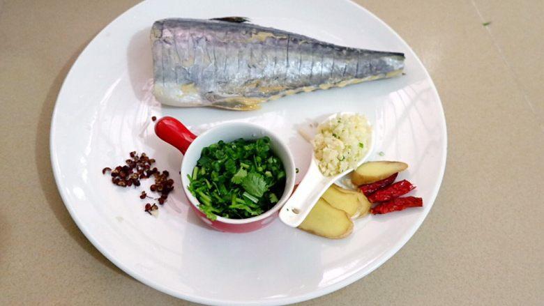 蒜香烧鲅鱼尾,食材简单处理。蒜切末,葱花香菜切末,鱼打直刀花刀。
