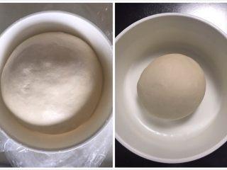 手撕豆沙面包,中种材料揉成光滑面团放入盆中套上保鲜袋冰箱冷藏发酵12-17个小时,