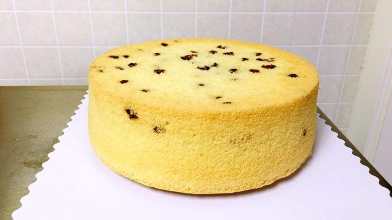 蔓越梅戚风蛋糕