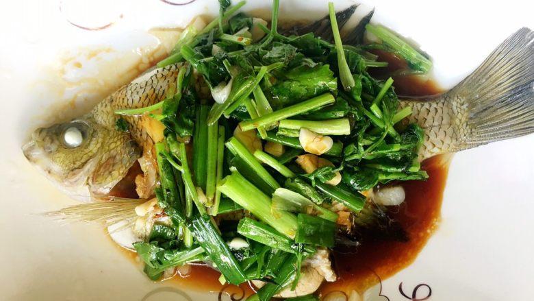 鲜美好吃的清蒸太阳鱼