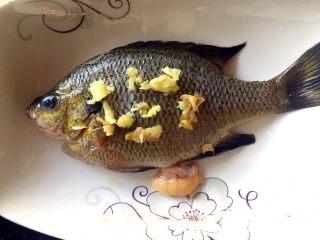 鲜美好吃的清蒸太阳鱼,鱼面上和鱼底下放点姜末