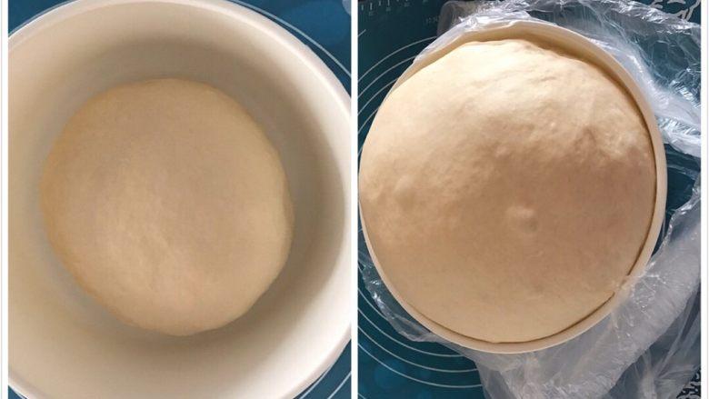 全中种北海道土司,所有中种材料揉成光滑均匀的面团,放入盆中套个袋子密封放室温发酵,发至2.5-3倍大,我是室温发酵的中种,亲可以冰箱冷藏发酵一晚上