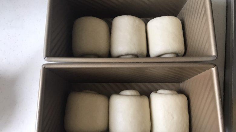 全中种北海道土司,放入450克土司模具,放烤箱发酵,开发酵功能,烤箱低部放一盘热水