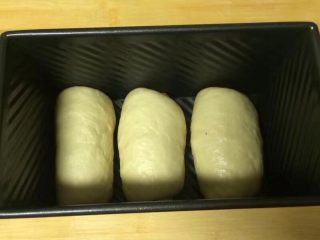 一次发酵吐司面包,放入到吐司磨具中