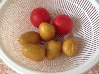 西红柿土豆炖牛肉,西红柿 土豆洗净备用