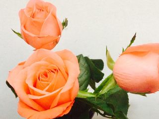 粉色心情,🌹情人节快乐!!🌹