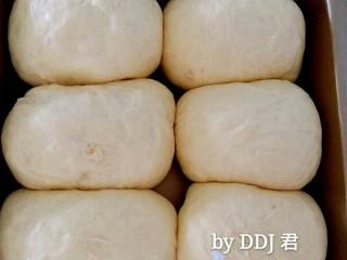 肉松小面包,发至两倍大就可以了。烤箱开启180度预热