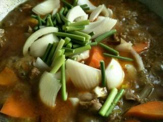 麻辣羊排煲,洋葱、蒜苔,炖至熟,撒入适量食盐即可出锅~