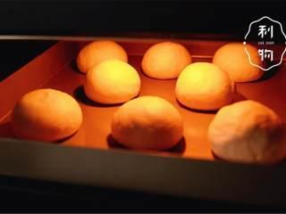 幸福小餐包,烤箱40℃发酵1小时,约2倍大。