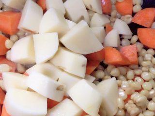 #万能的土豆#咖喱土豆,胡萝卜煸炒以后土豆下锅