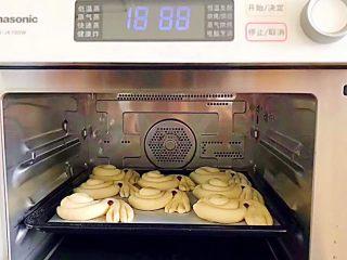 松软好吃萌小兔馒头(一次发酵),放入蒸烤箱,选择恒温发酵功能,20分钟! 如果你没有蒸烤箱,可以用烤箱发酵,现在天气热,室温发酵也是可以的,就是慢了一点,发酵到1.5倍大就可以了!