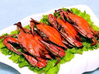 清蒸飞蟹,生菜铺在盘上摆入蒸好的飞蟹