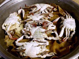 清蒸飞蟹,大火蒸至水开锅后再蒸15分钟即可一股浓浓的海鲜味扑鼻而来