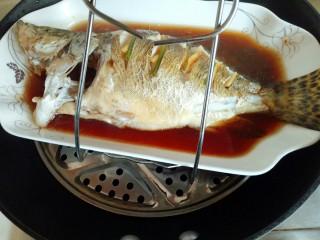 #味道鲜美的#清蒸桂鱼,蒸好的桂鱼,用夹子将盘子夹出,注意烫手。 蒸好的鱼会有很多汤汁,将汤汁倒出,再换个干净的鱼盘。(不换鱼盘也可以,根据个人喜欢。)