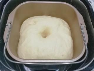 花式豆沙面包,发酵至2~2.5倍大,手指沾粉插孔面团,不塌陷不回缩,即发酵完毕;