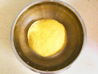 金灿灿的黄金南瓜豆沙馒头,感觉合适后,调成面团,放在温暖湿润处进行发酵 夏天的时候,常温发酵即可 冬天需要放在发酵箱,28度左右进行发酵